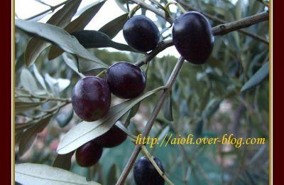 Olives noires au sel