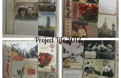 Project Life 2012...the end