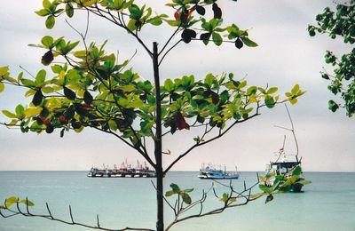 carnet de voyage : Thaïlande