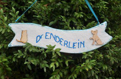 L'étrange cas du Dr Enderlein....