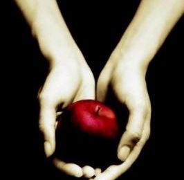 « Fascination » de Stephenie Meyer