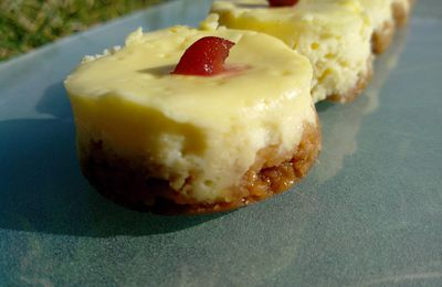 MINI CHEESE CAKES CITRON CRAMBERRIES