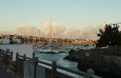 Retrouvailles au Port de Saint Pierre