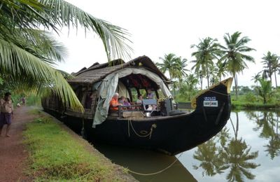 Kerala- Inde : sur les Backwaters (4)