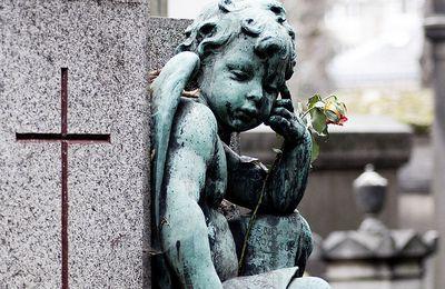 L'herbe cache et la pluie efface - Les misérables de Victor Hugo