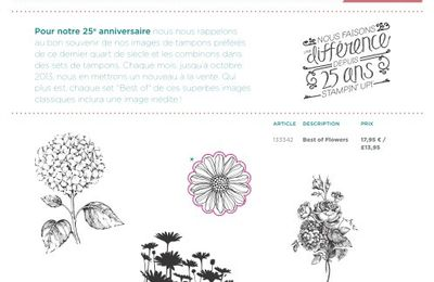 STAMPIN UP FETE SES 25 ANS