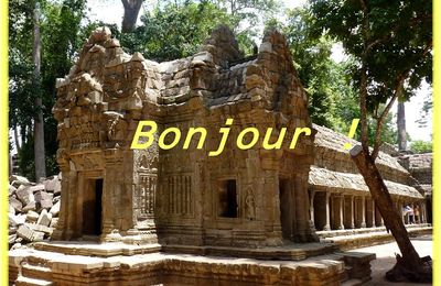 "Cambodge ,l'incroyable "" fromager "" de Ta Prohm"