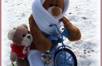 Bidule  veut  aller aux  sports  d'hiver !