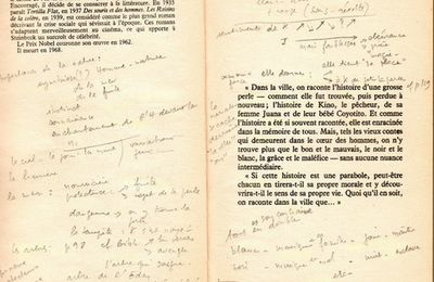 Steinbeck: note de lecture 2