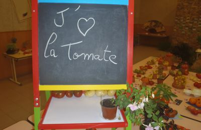 Expo tomate