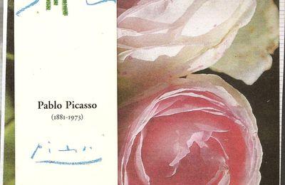 """mailart """"rose/picasso"""" reçu"""