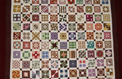 CIVIL WAR DIARY QUILT EXPOSE