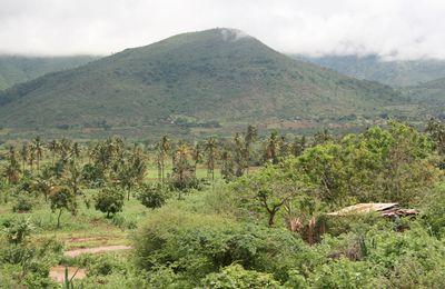Tanzanie : après les parcs du Nord, cap à l'Est !
