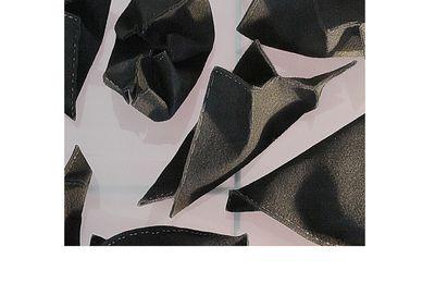 mots clefs: vadim sérandon , art contemporain