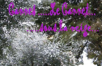 La neige à Cannes......