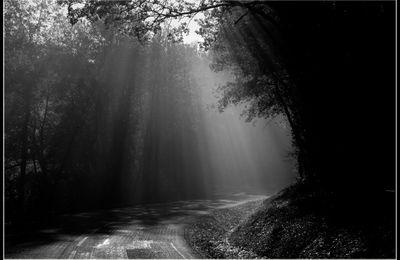 """""""Il n'y a pas de lumière sans ombre."""" Louis Aragon"""