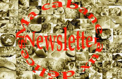 Newsletter : Recettes indiennes