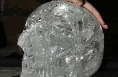 Le crâne de Cristal et moi