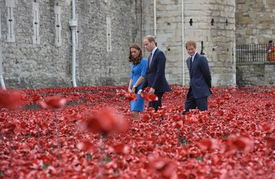 Poppy Day - Tower of London