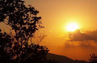 Bartimée et la Nouvelle Evangélisation