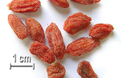 Baies de goji, antifatigue