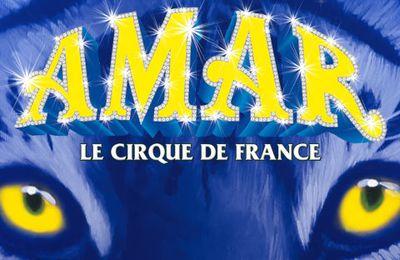 Plein les yeux au cirque AMAR