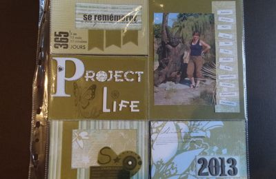 "Mon ""Project life 2013"""