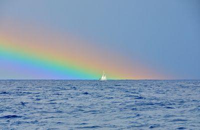 belles images de voile et de mer