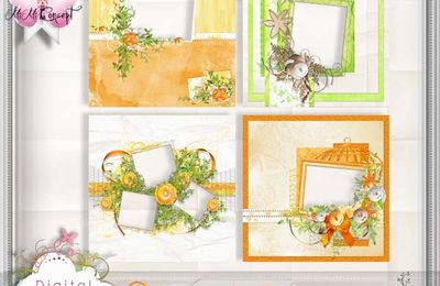 QP Scrapbook Paper Orange