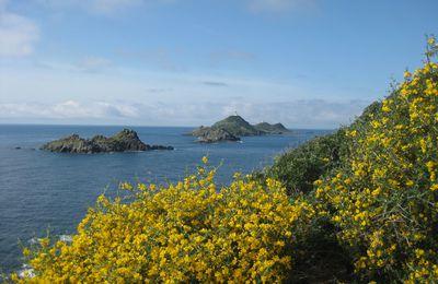 L'île de beauté... (part2)