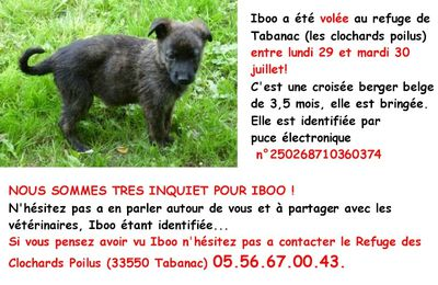 HELP !!! Vol d'animaux = ATTENTION!!!