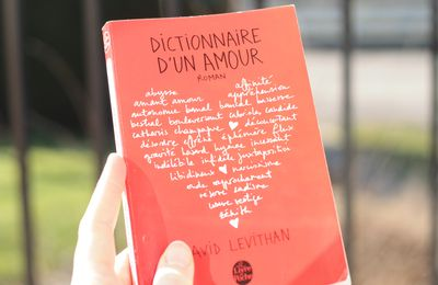 Dictionnaire d'un amour de David Levithan