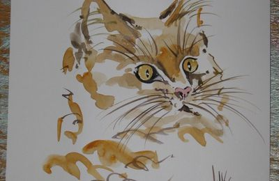 CHATS AQUARELLES