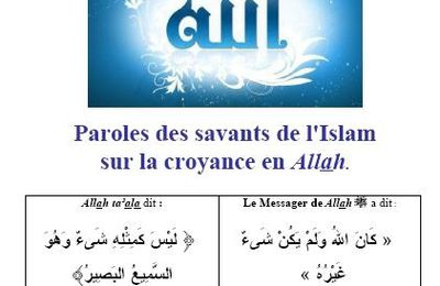 Paroles des savants sur la Croyance en Allah (pdf)
