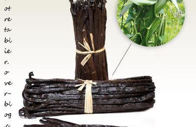 La Vanille Bourbon de Madagasar de Lord-Vanilla et ses recettes ...