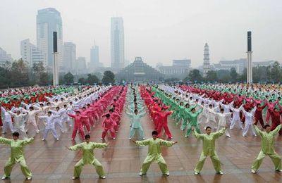 DAO YIN YANG SHENG GONG: POEMES DE PREPARATION