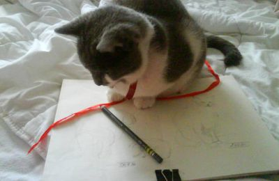 Comment dessiner un chat comme ça?