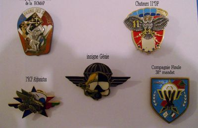 Insignes militaires para.