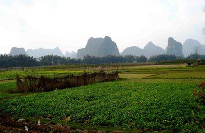 """Mercredi 24 février (阳朔 (Yangshuo): les alentours, balade sur le 遇龙江 (fleuve Yulong) et 印象—刘三姐 (spectacle """"Impression - les 3 filles de la famille Liu)"""
