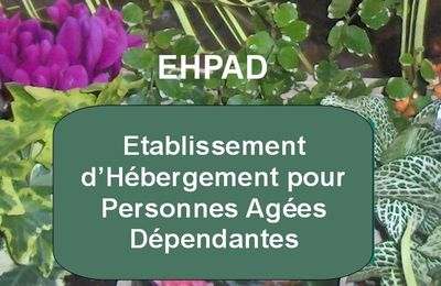 Action sociale : Ehpad*