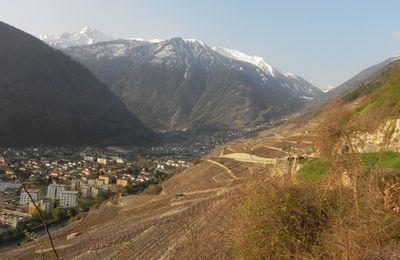 Balade botanique dans le Valais le 16.04.10