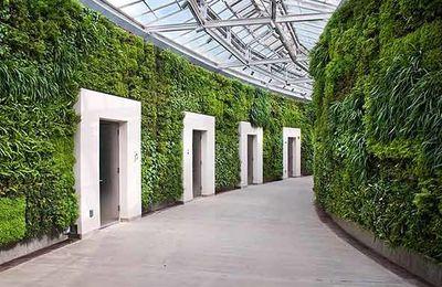 Le plus grand mur végétal au monde