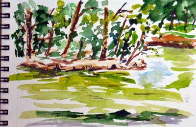croquis aquarelle etang des Ibis loisirs et culture de la peinture et du dessin