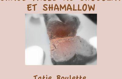 CHAUD-FROID AU CHOCOLAT ET SHAMALLOW