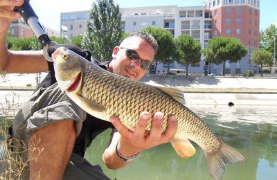 Montpellier été 2010