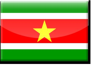 SURINAME: a paradise of Gold, Nature and Cultures..