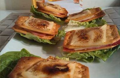 Croque monsieur Tuc