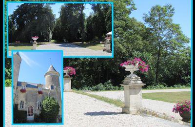 Fontenay le Comte et son Château