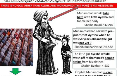 To call Muhammad a prophet is an insult to all other prophets & spiritually enlightened men of entire history
