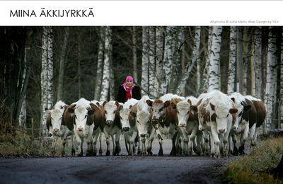 Miina Äkkijyrkkä: étonnante fermière !